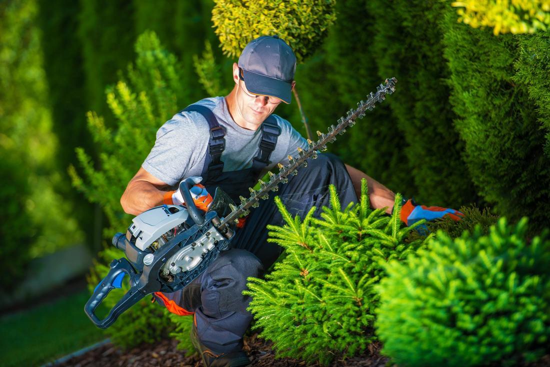 Landscape gardeners north shore