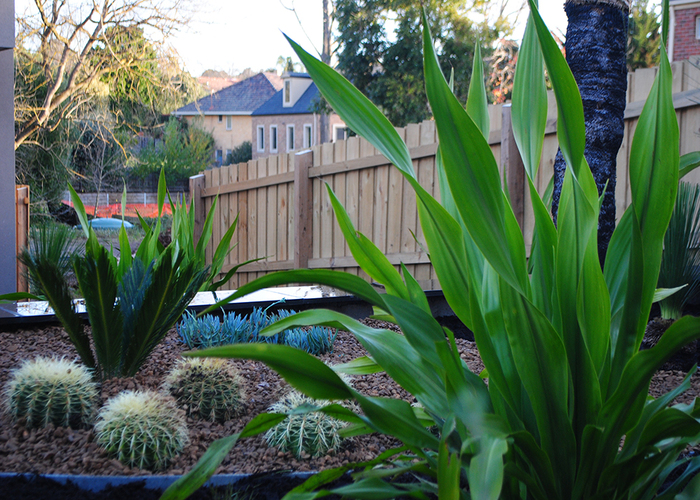 North shore landscaping companies